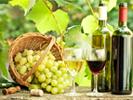 Малое виноделие (домашнее)